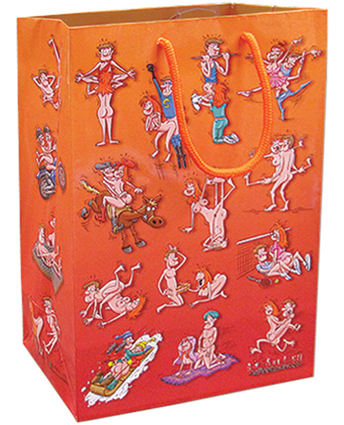 Different Sexual Places Gift Bag