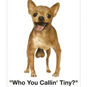 Who you callin tiny? tin sign
